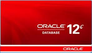 [Oracle] 12c RMAN – RECOVER TABLE